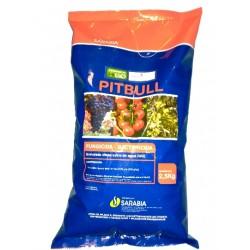 PITBULL E/2.5 KG. (HIDROXIDO CUPRICO 25% WG)
